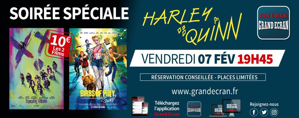 Soirée Harley Quinn